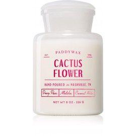 CACTUS FLOWER Большая свеча в аптекарской баночке, PaddyWax